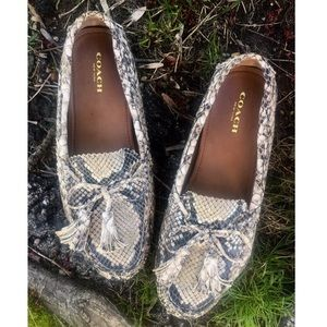 COACH Snakeskin Leather Driving Loafer NEW Sz7-7.5